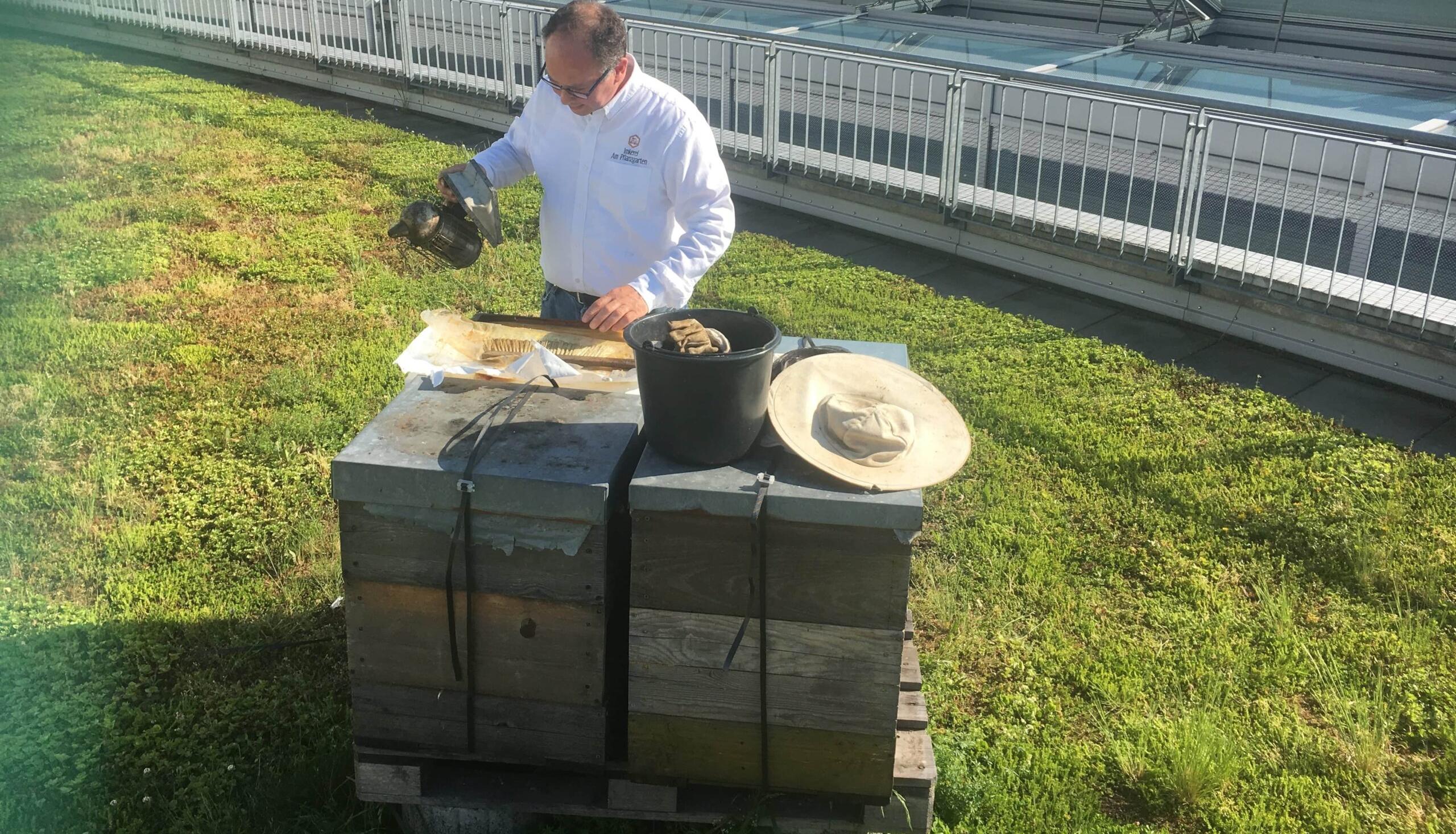 Der Imker und seine Bienen auf dem Dach der Wilmersdorfer Arcaden.